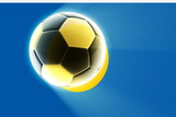 Flag of Palau soccer poster