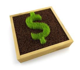 growing dollar symbol