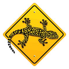 Salamander, Schild