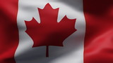 Creased canada cotton  flag in wind in slow motion poster