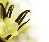 Fototapety Beautiful Vanilla beans and flower over blurred background