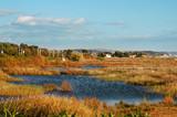 wetlands Torredembarra, Tarragona poster