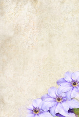 Photo based illustrated background with Clematis flowers