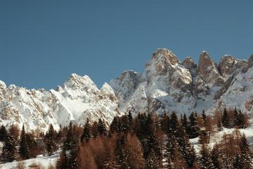 Montagne innevate con pineta
