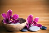 Composition zen - fleurs orchidée et pierres