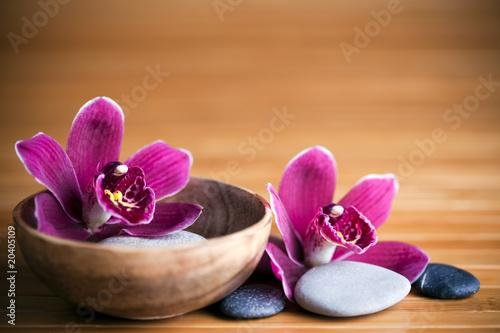 zen-sklad-kwiaty-orchidei-i-kamienie