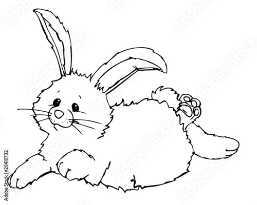 kaninchen hase auf meine art — rezepte suchen