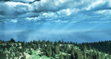 Awesome panoramic view of forest over the sea poster