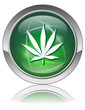 MARIJUANA Web Button (Green Cannabis Leaf Drugs Addiction Sign)