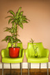 Two Green Plastic Chairs with Plants