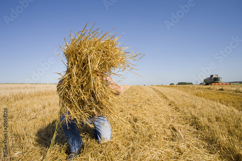 Farmer picking up straw