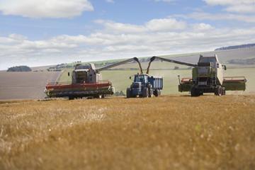 Harvesters loading truck