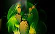 Illustration of green cactus
