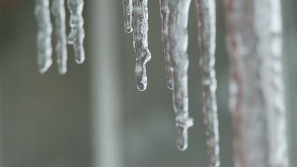Eiszapfen Winter Tauwetter Tropfen