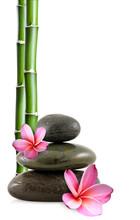 Frangipani blommor, småsten och bambu Zen