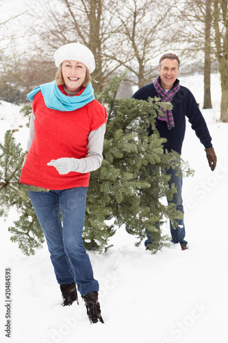 Senior Couple Carrying Christmas Tree In Snowy Landscape