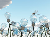 light bulb field
