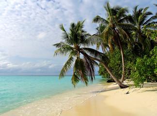 Tropical beach on the Maldives