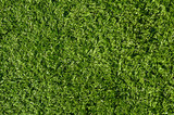 Fake Grass used for outdoor sports