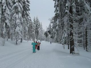 Ski fahren auf dem Rennsteig II