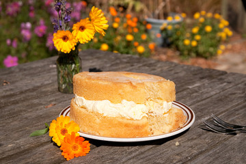 Lopsided frosted sponge cake with flowers
