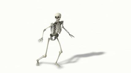 Skelet schleicht
