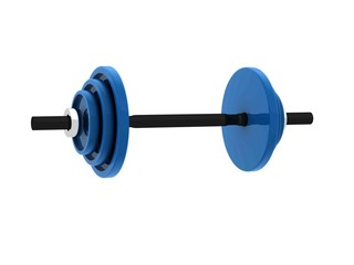 Weights for bodybuilding