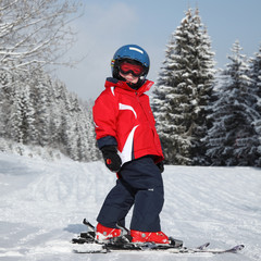 Petit skieur sur une piste verte #2