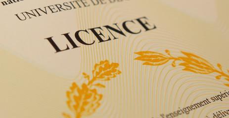 Diplôme de licence universitaire