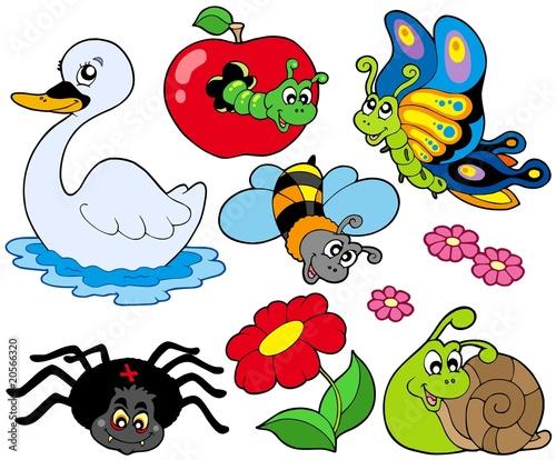 动物可爱的图形夏天季节性小的少许布卢姆幸福彩色微笑快乐的插图昆虫