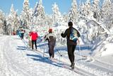 Ski Langlauf  4593