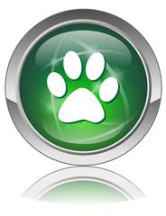 WILDLIFE Web Button (Safari Paws Fauna Animals Cat Dog Pets Zoo)