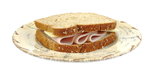 Turkey and cheese sandwich on plate
