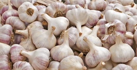 Close up of fresh bulbs of garlic for sale at a market