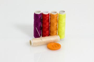 fili e colori