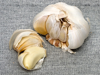 Cloves And Bulb Of Garlic