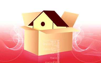 Illustration of a house in a cardboard box