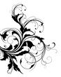 Abstract swirly floral element on white