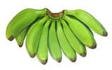 Green banana known as Plantain poster