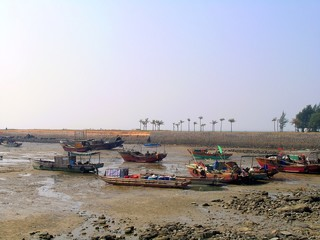 small harbor during low tide