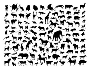 Animals silhouettes isolated on white