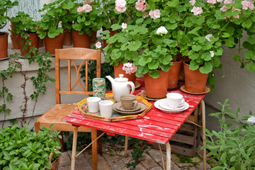 Afternoon tea in the greenhouse