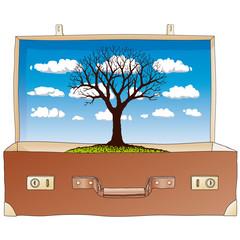 albero in valigia