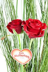 Zwei Rote Rosen mit Dekoherz und Gras