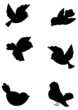 Set outline birds