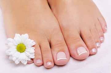 French pedicure on a female feet