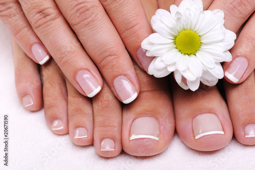 Well-groomed female toes