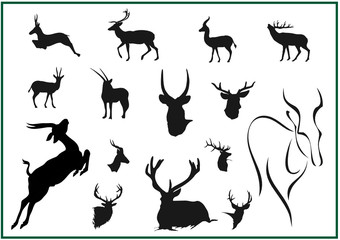 Jagdsaison