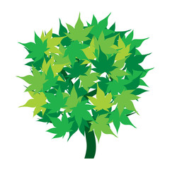 Green tree icon with leaves isolated