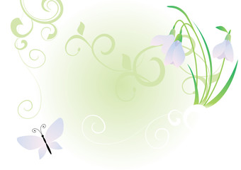 snowdrops and butterfly vector image